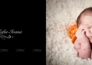 O pagina din albumul Sofiei