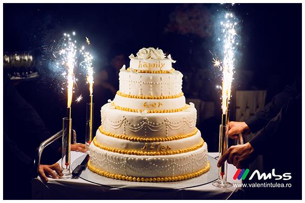 Miruna&Marius- fotograf nunta075